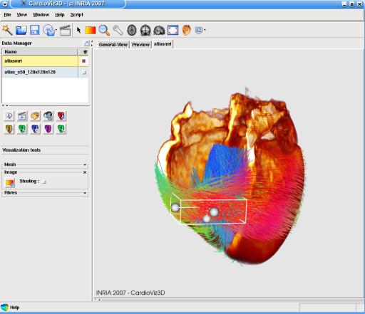 screenshot n. 13